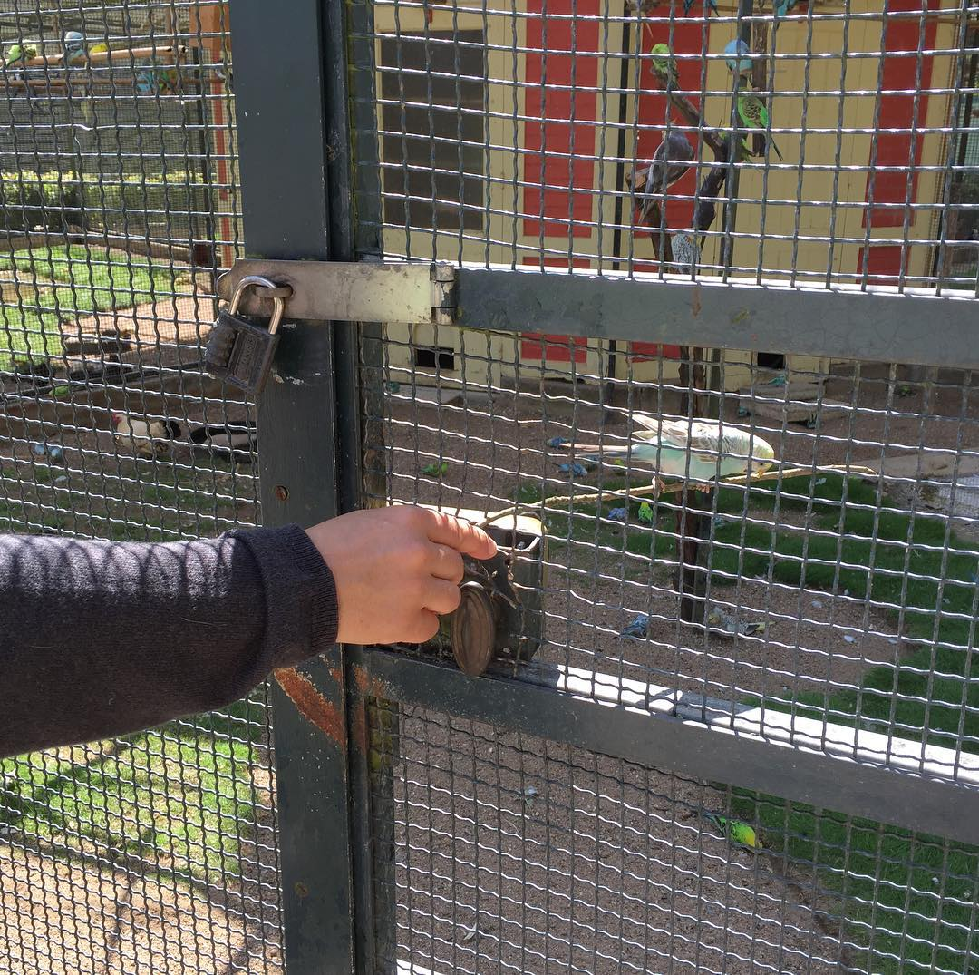 Clodyn encantadora oficial de pajaretes del Parc du Thabor
