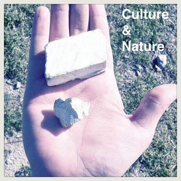 culture & nature