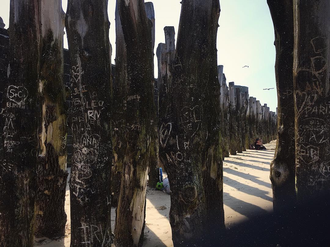 Playa en SaintMalo y su bosque de troncos